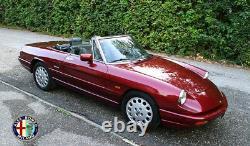 Ellébore Flying Alfa Romeo 115 Spider Gt Bertone Junior 1300 Gtv 2000 Montreal